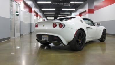 Lotus rear